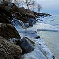 Winter Beach by Grace  Nava