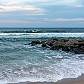 Winter Beach Lavallette New Jersey  by Terry DeLuco