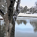 Winter Beauty by Betty LaRue