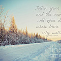Winter Bliss by Alanna DPhoto