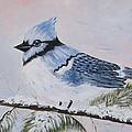 Winter Bluejay by Phyllisann Arthurs
