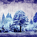 Winter Blues by Mindy Bench