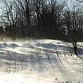 Winter Breeze by Donna Desrosiers