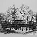Winter Bridge by Stephanie  Bland