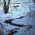 Winter Brook by Roger Bruneau
