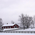Winter by Carolyn Odell