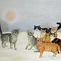 Winter Cats by Ditz