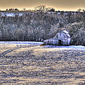 Winter Charm by Thomas Danilovich