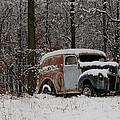 Winter Classic by Trish Tritz