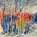 Winter Colors by Daliana Pacuraru