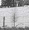 Winter Comes by Steve Harrington