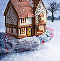 Winter Cottage In Gloved Hand by Amanda Elwell