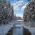 Winter Creek by Fran Riley