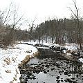 Winter Creek by Susan Herber