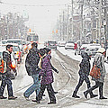 Winter Crossing by Keith Armstrong