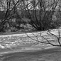 winter day BW-Black and white presentation of Snow on a frozen creek south  by Leif Sohlman