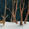 Winter Deer by Rebecca Davis