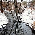 Winter Ditch by Valentino Visentini