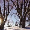 Winter Evening by Gloria Pasko