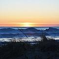 Winter Evening by Linda Kerkau