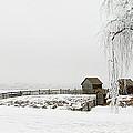 Winter Farm by Mary Jo Allen