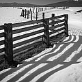Winter Fence by Inge Johnsson