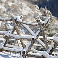 Winter Fence Line  by Dorothea Hanson