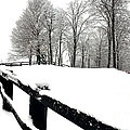 Winter Fence by Marcel  J Goetz  Sr