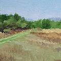 Winter Field N0. 2 by Robert Rohrich