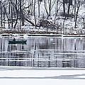 Winter Fishing - Wisconsin River by Steven Ralser