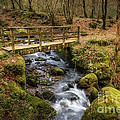 Winter Footbridge by Adrian Evans