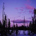 Winter Glow by Angi Parks