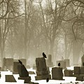 Winter Graveyard Crows by Gothicrow Images