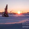 Winter Sunrise  by Alanna DPhoto