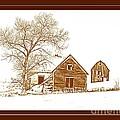Winter Homestead by Barbara Henry