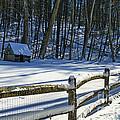 Winter Hut by Paul Ward