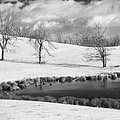Winter In Kentucky by Wendell Thompson