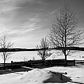 Winter In Roztocze by Tomasz Dziubinski