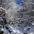 winter in the Bavarian alps 2 by Rudi Prott