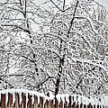 Winter In The Heartland 1 by Deborah Smolinske