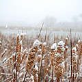 Winter In The Heartland 6 by Deborah Smolinske