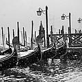 Winter In Venice by Yuri San