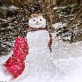 Winter Is Here by LeeAnn McLaneGoetz McLaneGoetzStudioLLCcom