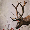 Winter King by Julie Magers Soulen