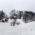 Winter Landscape 5 by Dan Stone