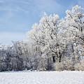 Winter Landscape by Dan Radi
