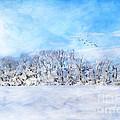 Winter Landscape by Darren Fisher