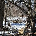 Winter Log by Linda Kerkau
