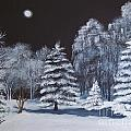 Winter Moonlight In The Country