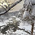 Winter Morning by Bill Wakeley